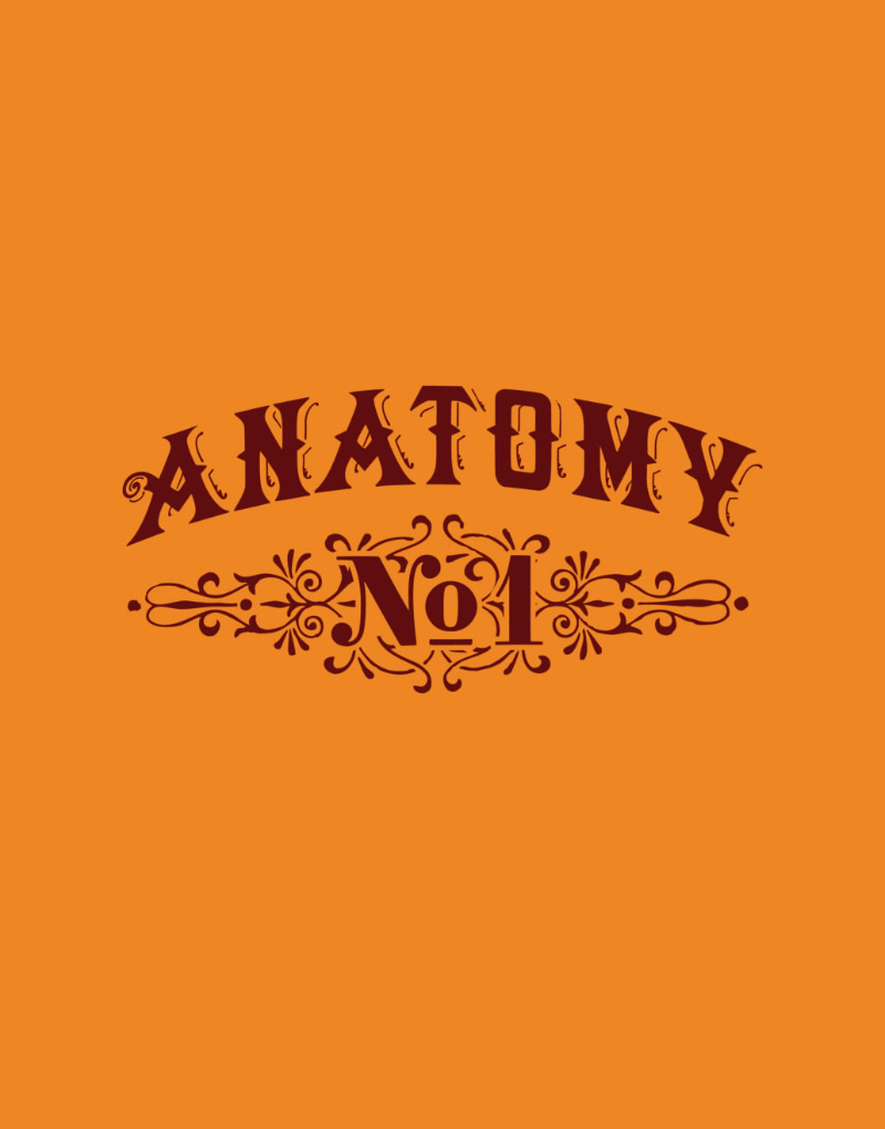 Anatomy Logo Design