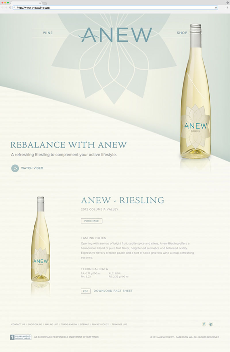 Anew Home Page Website Design