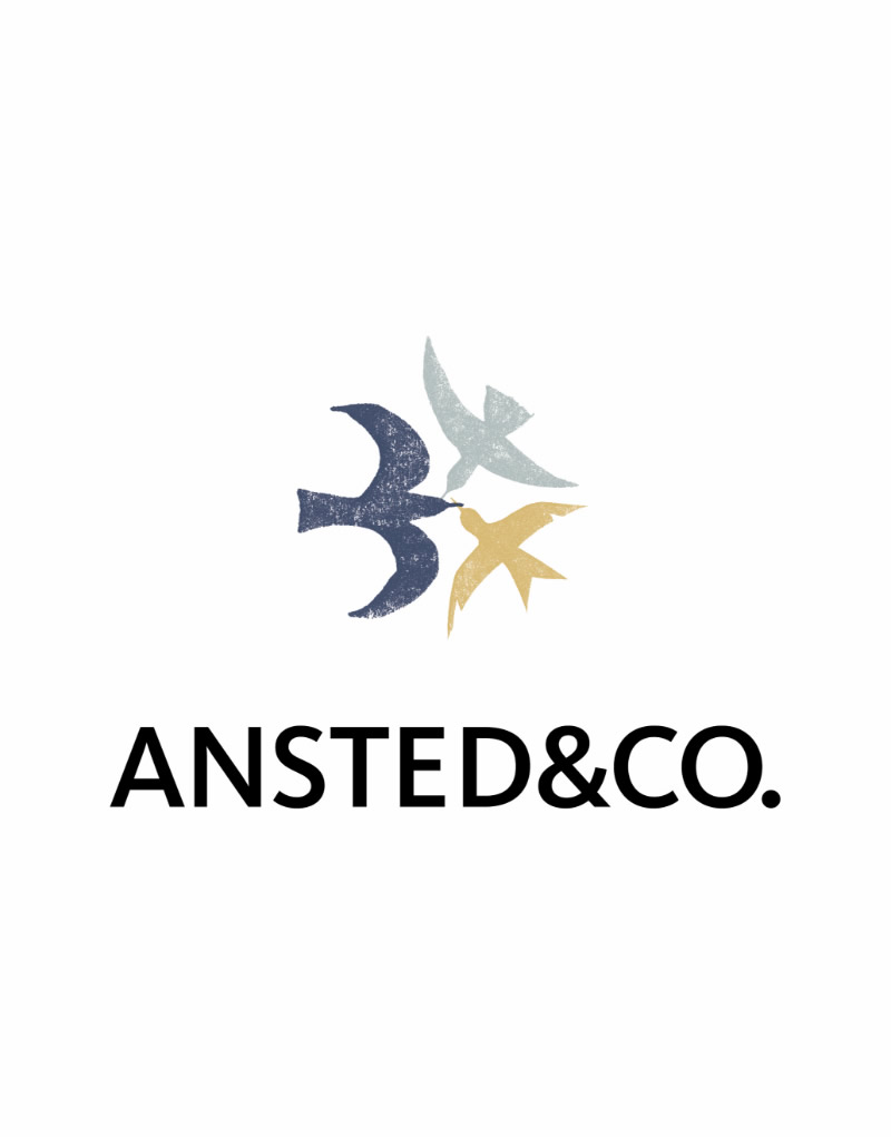 Ansted & Co Logo Design