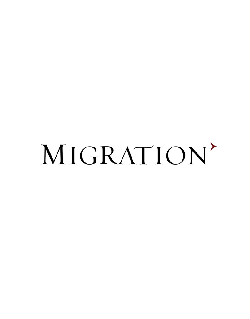 Migration Logo Design